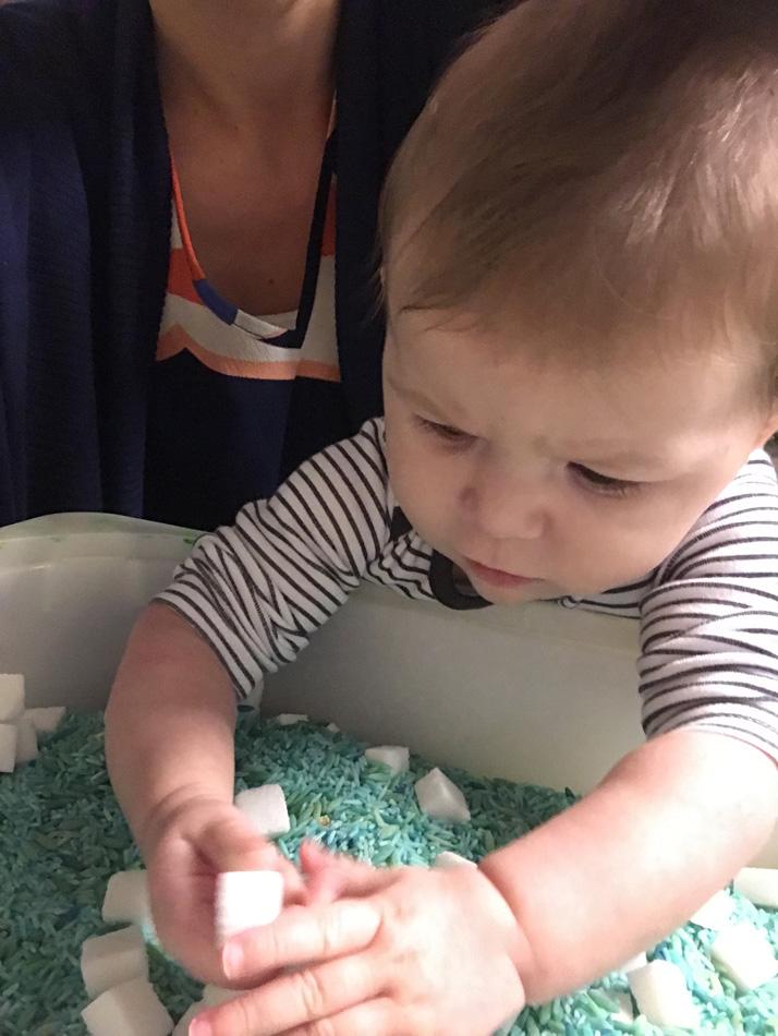 blauw-gekleurde-rijst-en-suikerklontjes-2